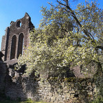 Llanthony, a former Augustinian priory is reputedly built on the site of a ruined chapel dedicated to St David, a Celtic saint. Image: Marianne Last
